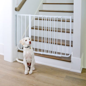 Stairway Special Pet Gate (Model SS-30)