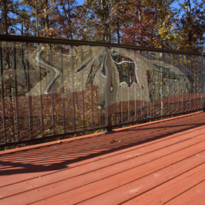 Outdoor Clear Deck Shield