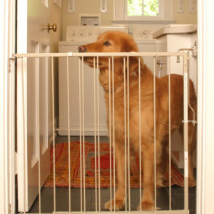 Duragate Pet Gate (Model MG-25)